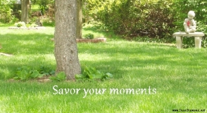 Savor Your Moments